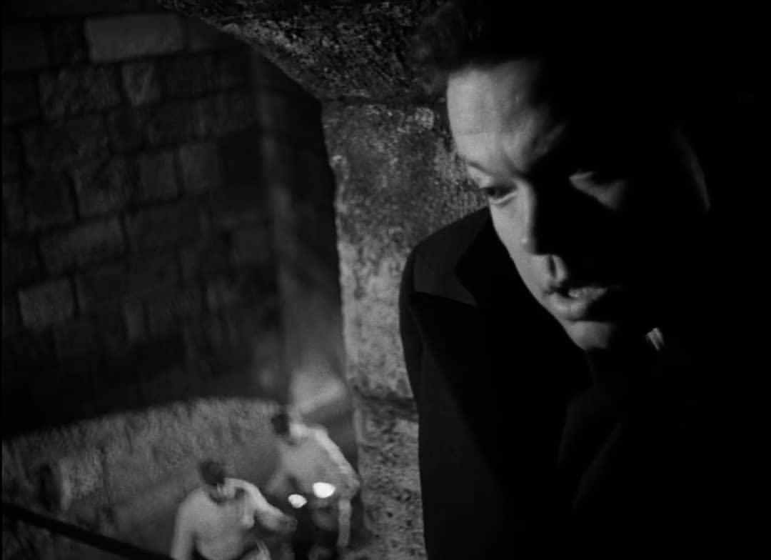 """「第三の男」""""The Third Man""""(1949)"""