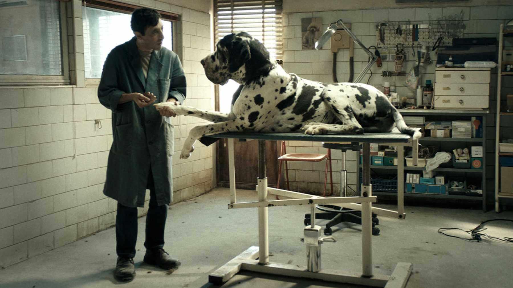 dogman-2018-movie