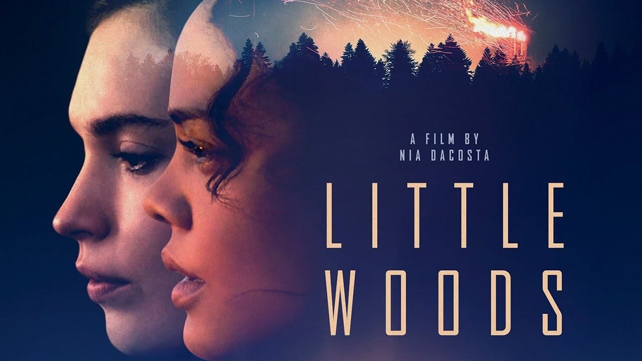 Little_Woods-2018-movie
